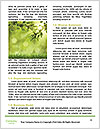 0000080158 Word Templates - Page 4