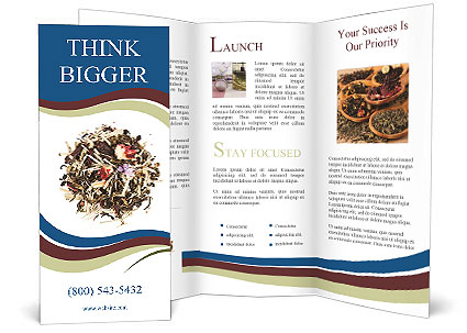 0000080159 Brochure Template