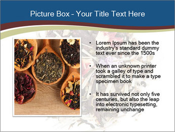 0000080159 PowerPoint Template - Slide 13
