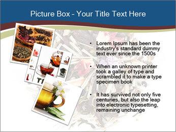 0000080159 PowerPoint Templates - Slide 17