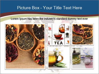 0000080159 PowerPoint Templates - Slide 19