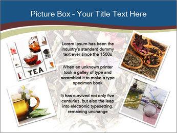 0000080159 PowerPoint Templates - Slide 24