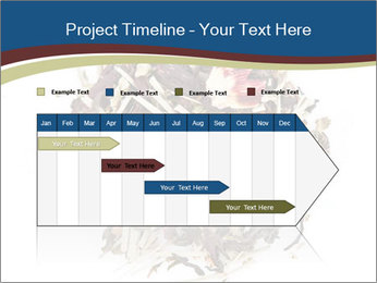 0000080159 PowerPoint Templates - Slide 25