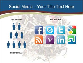 0000080159 PowerPoint Templates - Slide 5