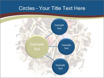 0000080159 PowerPoint Templates - Slide 79