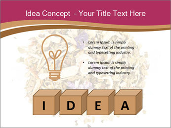 0000080160 PowerPoint Template - Slide 80