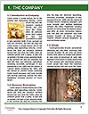 0000080165 Word Template - Page 3