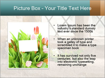 0000080173 PowerPoint Templates - Slide 13