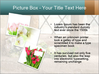 0000080173 PowerPoint Template - Slide 17