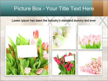 0000080173 PowerPoint Templates - Slide 19