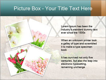 0000080173 PowerPoint Templates - Slide 23
