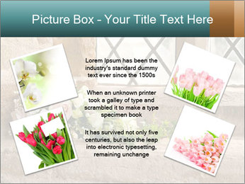 0000080173 PowerPoint Templates - Slide 24