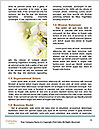 0000080173 Word Template - Page 4