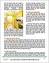 0000080175 Word Templates - Page 4