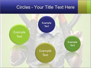 0000080176 PowerPoint Template - Slide 77