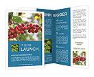 0000080181 Brochure Templates