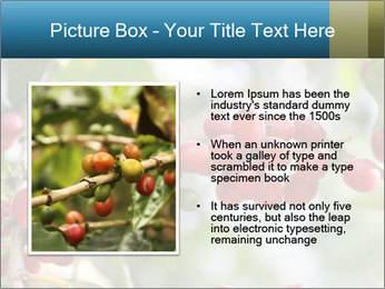 0000080181 PowerPoint Template - Slide 13