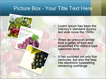 0000080181 PowerPoint Template - Slide 17