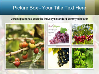 0000080181 PowerPoint Template - Slide 19