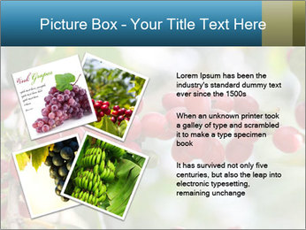 0000080181 PowerPoint Template - Slide 23