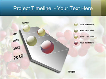 0000080181 PowerPoint Template - Slide 26