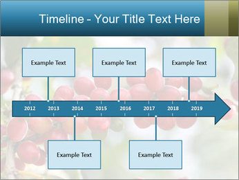 0000080181 PowerPoint Template - Slide 28