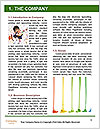 0000080182 Word Template - Page 3