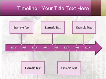 0000080186 PowerPoint Template - Slide 28