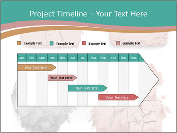 0000080207 PowerPoint Template - Slide 25