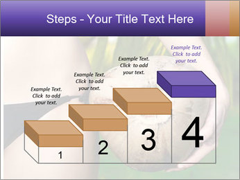 0000080210 PowerPoint Template - Slide 64