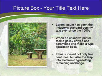 0000080212 PowerPoint Template - Slide 13