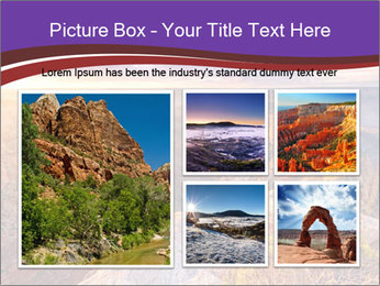 0000080217 PowerPoint Template - Slide 19