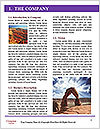 0000080217 Word Template - Page 3
