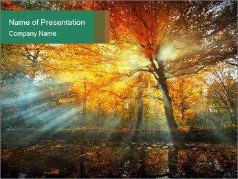 0000080218 PowerPoint Template - Slide 1