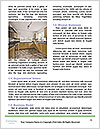 0000080228 Word Template - Page 4