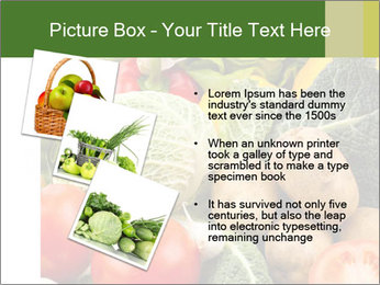 0000080233 PowerPoint Template - Slide 17