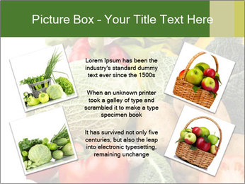 0000080233 PowerPoint Template - Slide 24