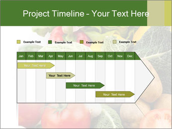 0000080233 PowerPoint Templates - Slide 25