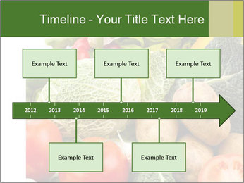 0000080233 PowerPoint Templates - Slide 28