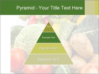 0000080233 PowerPoint Templates - Slide 30