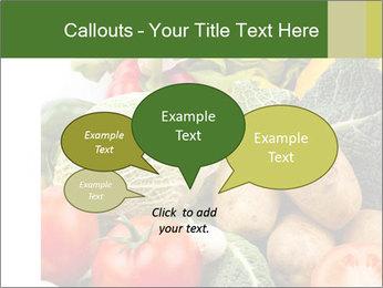 0000080233 PowerPoint Templates - Slide 73