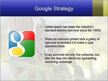 0000080237 PowerPoint Template - Slide 10