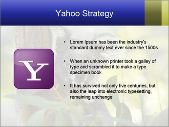0000080237 PowerPoint Template - Slide 11