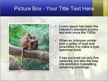 0000080237 PowerPoint Template - Slide 13