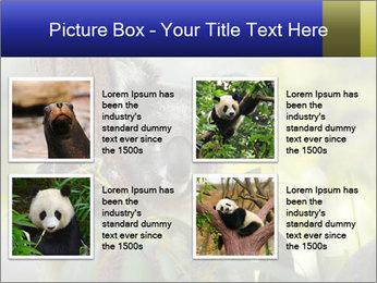0000080237 PowerPoint Template - Slide 14