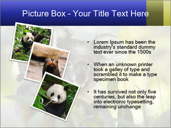 0000080237 PowerPoint Template - Slide 17