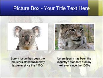0000080237 PowerPoint Template - Slide 18