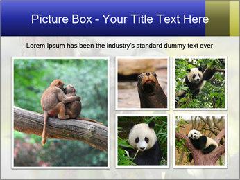 0000080237 PowerPoint Template - Slide 19
