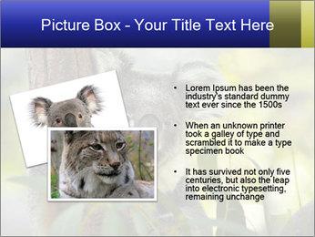 0000080237 PowerPoint Template - Slide 20