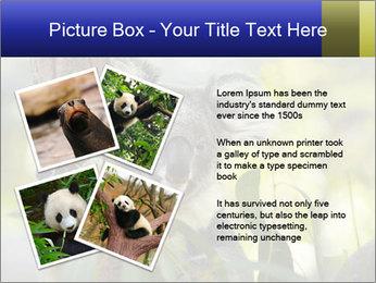 0000080237 PowerPoint Template - Slide 23